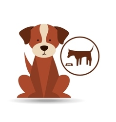 Veterinary dog care food icon vector