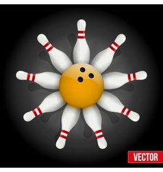 Bowling pins and ball with a flower vector image