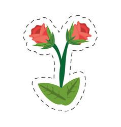 Cartoon rose flower image vector
