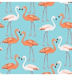 Flamingo couple seamless pattern on blue polka dot vector image