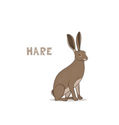 a cartoon hare isolated on a white background vector image
