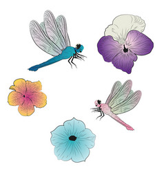 Dragonflies and petunias vector