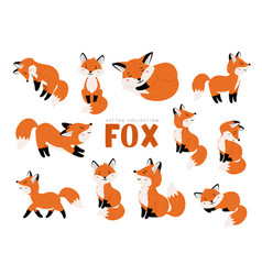 Funny fox set vector