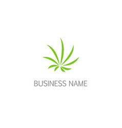 green leaf cannabis eco logo vector image