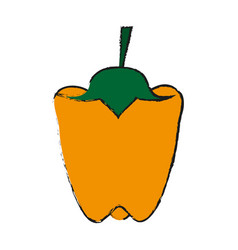peppers food draw vector image