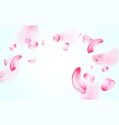 Pink sakura fresh falling petals with drops of vector