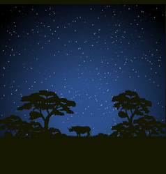 Starry night scene african landscape with vector