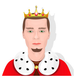 bearded king with a crown vector image vector image