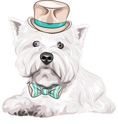 hipster dog West Highland White Terrier vector image vector image