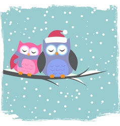 Winter card with cute owls vector image vector image
