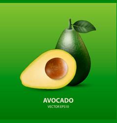 3d realistic half and whole avocado vector