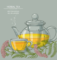 cup of yarrow tea and teapot vector image