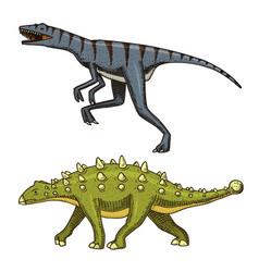 Dinosaur ankylosaurus talarurus velociraptor vector