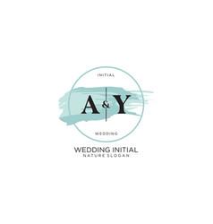 Initial ay letter beauty logo handwriting vector