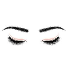 Logo eyelashes the eyes girl with makeup vector