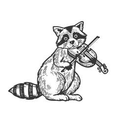 Raccoon playing violin engraving vector