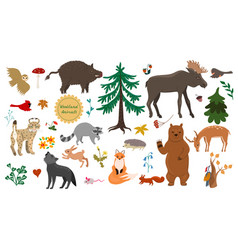 Set forest animals birds and plants isolated vector