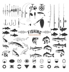 set of fishing labels design elements rods vector image