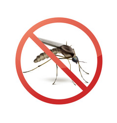 Stop sign on mosquito vector