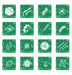 Virus bacteria icons set grunge vector