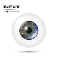 eye realistic of 3d human vector image vector image
