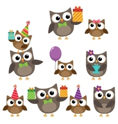 Birthday party elements with owls vector image