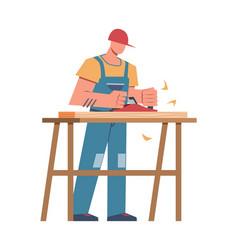 builder and professional equipment carpenter vector image