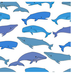 cartoon sea whale and sperm whale seamless vector image
