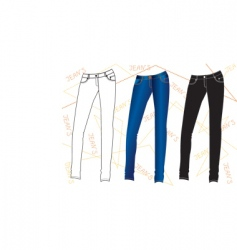 clothes special jeans vector image