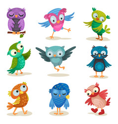 cute colorful owlets set sweet owl birds cartoon vector image
