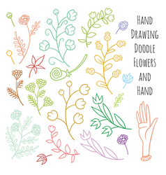 Set of summer flowers delicate shades vector