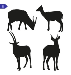 Silhouettes of wild goats vector