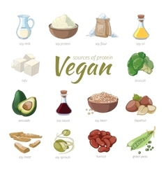 Vegan sources of protein Plant based protein vector
