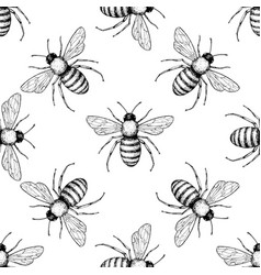 bee seamless pattern hand drawn insect vector image vector image