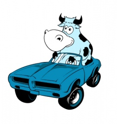 cow driving a car mascot vector image vector image