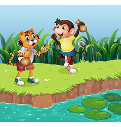 A monkey and a tiger playing vector