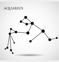 Constellation aquarius zodiac sign vector