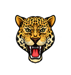 Jaguar head isolated cartoon mascot design vector