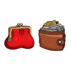 purse and wallet with money and credit cards vector image