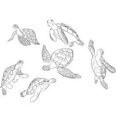 Set sea turtle isolated background vector