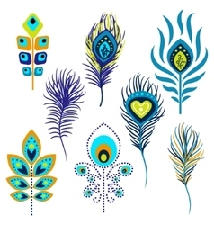 Peacock feathers clipart vector image vector image