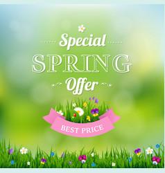 spring offer banner vector image vector image