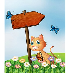 An orange cat with a wooden arrow board vector image vector image