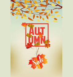 banner with the words autumn autumn leaves vector image