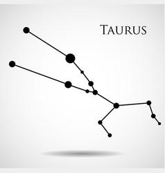 Constellation taurus zodiac sign vector