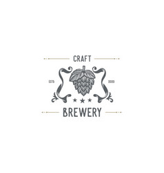 craft brewery vector image