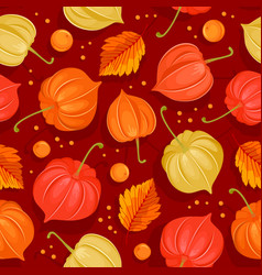 seamless pattern with autumn leaves and physalis vector image