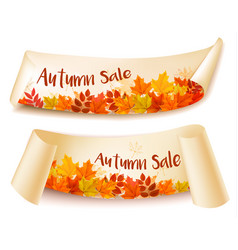 Two autumn sale banners with colorful leaves vector