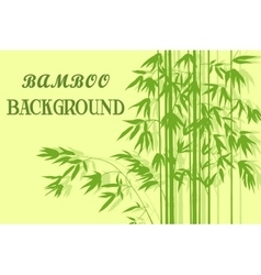 Bamboo with leaves green silhouettes vector