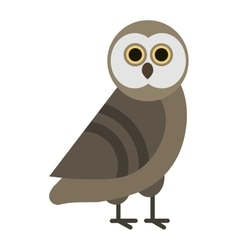 Owl wild bird cartoon vector image